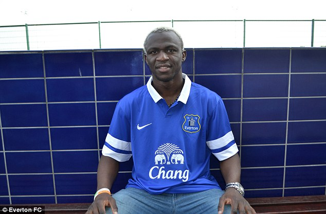 New boy: Arouna Kone has joined Everton this summer
