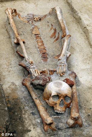 Eerie: The team of historians discovered graves containing four skeletons with their heads removed and placed between their legs near the southern town of Gliwice, Poland