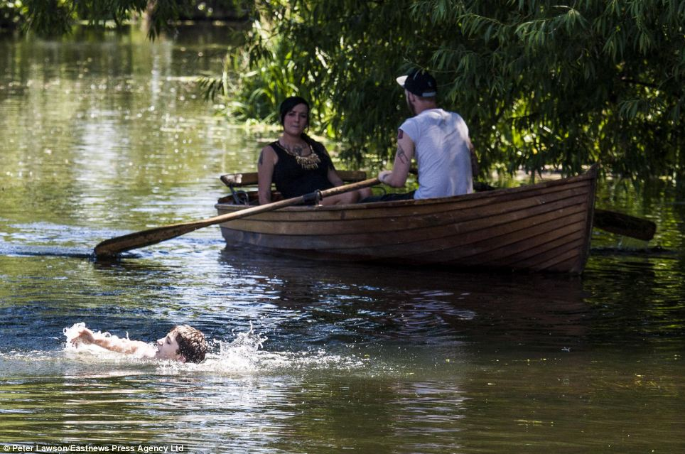 Everybody wants to cool down: A swimmer splashes past a couple rowing on the River Stour in Dedham, Essex