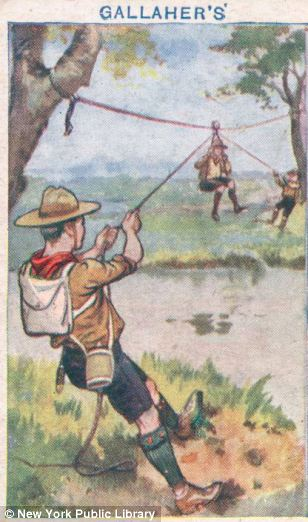 while adventurous types should get 'a boy' to swim a tree-tied rope