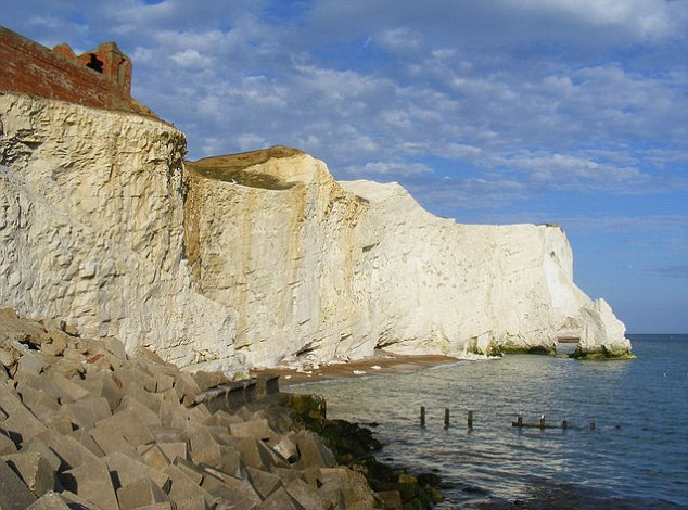 Scene: Mr Bhattacharjee's body was found at the foot of a cliff at Splash Point in Seaford, East Sussex