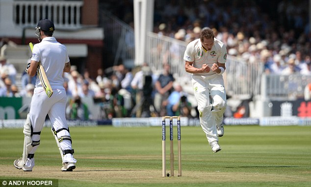 Jumping for joy: Harris celebrates as Pietersen walks back to the pavilion