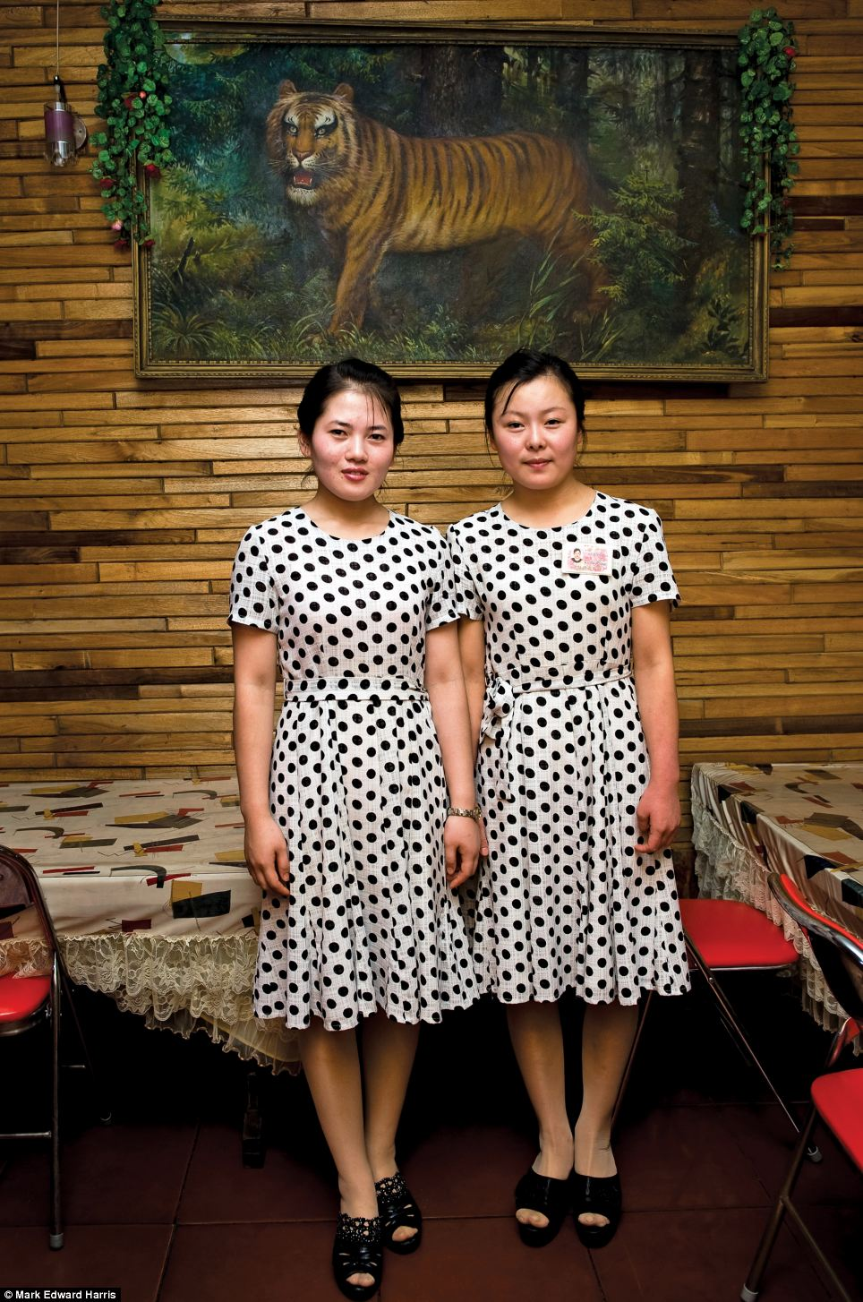 Away from the military patrols, two waitresses stand in front of a tiger portrait in Wonsan, North Korea. The town is usually not accessible to tourists but photographer Mark Edward Harris was able to visit in July 2011