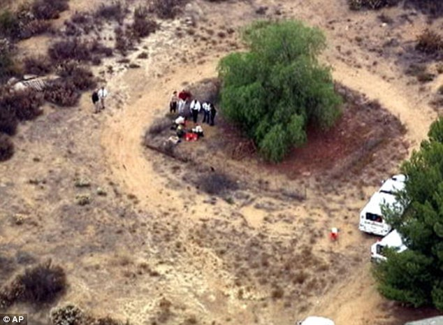Near home: The boys lived with their mother and her partner in the home center right, and Terry's body was found in a shallow grave by the tree back to the left, only 100 feet away