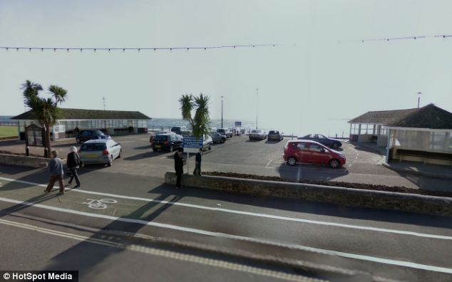 Seafront: The dog was left in a car in Exmouth for around an hour as temperatures soared to 30C