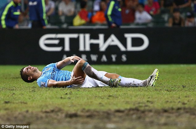 In pain: Nastasic injured his ankle in the game against Sunderland