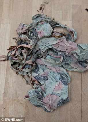 Remnants: As she was cooking she leaned over one - setting fire to her cotton White Stuff floating beach dress (L) but her £35 bikini (R) saved some areas from damage