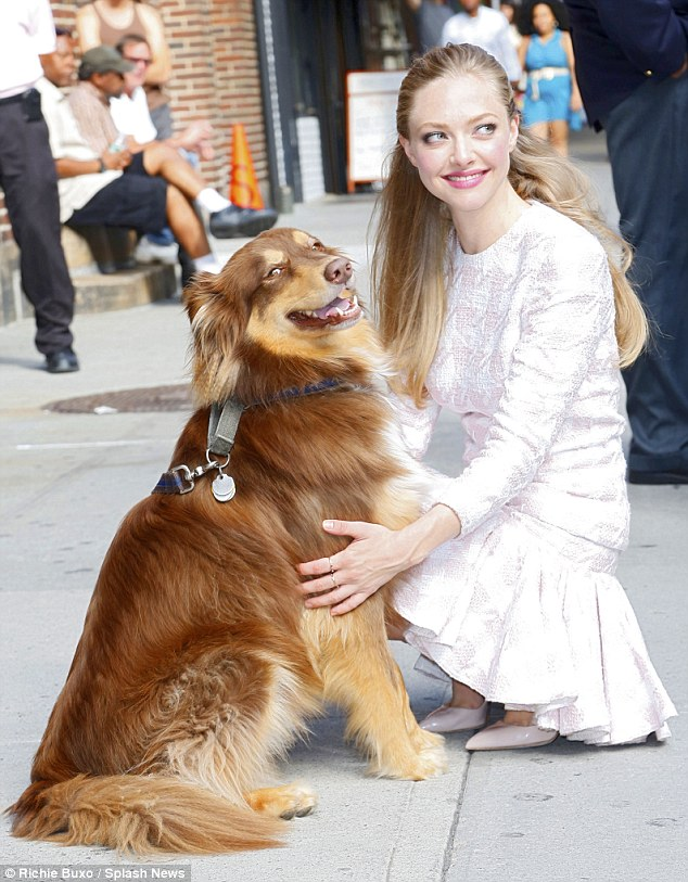 A girls best friend: The Lovelace star was joined by her constant companion, her pet dog Finn as she arrived at Letterman