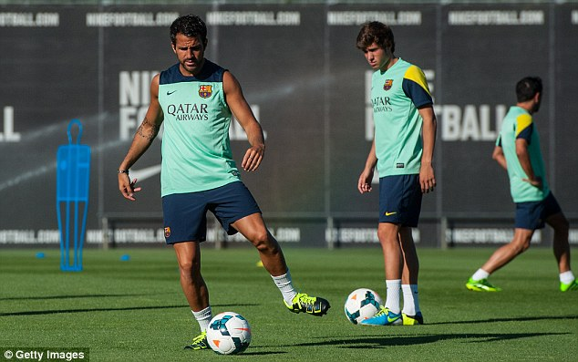 Top target: Manchester United hope to capture Barcelona midfielder Cesc Fabregas