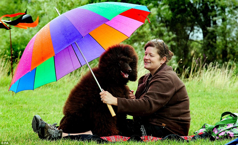 Ruth Walton shelters from the rain with poodle Trevor during the Capable Canines Dog Show at Catton Hall, Walton-on-Trent, Derbyshire