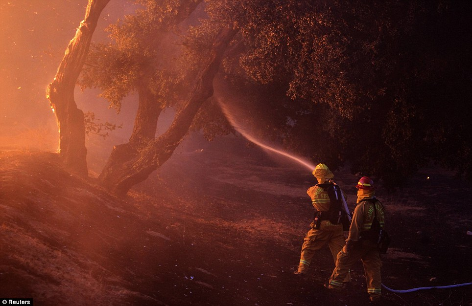 Battle: Two firefighters (not pictured) were injured in the battle to bring the raging wildfire in southern California, near Banning, under control. The rage engulfed homes in the Twin Pines Road area, California, pictured, yesterday
