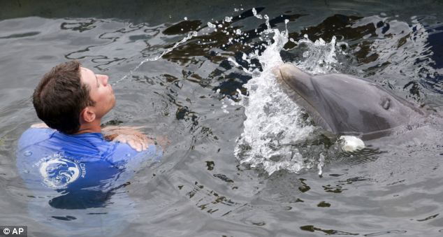 Here Tanner and his trainer Wade Davey have fun conducting the experiment into dolphins' problem solving skills