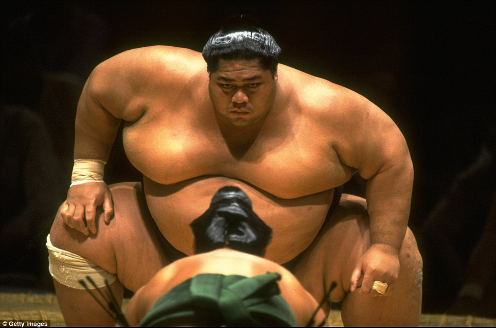 Chris Cole of Allsport took this shot of sumo wrestler Konishiki  'The Dumptruck'' of Hawaii staring down at his opponent during the first Sumo Bashai held outside Japan, at the Albert Hall in London, England in November 1991