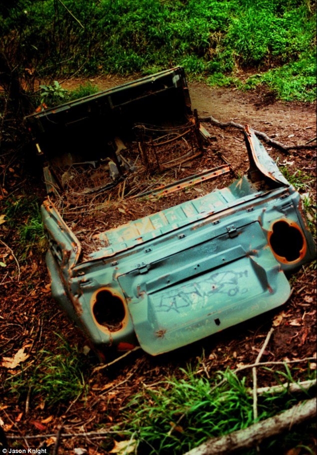 Obscured: Mud and plants fill the remains of this vehicle