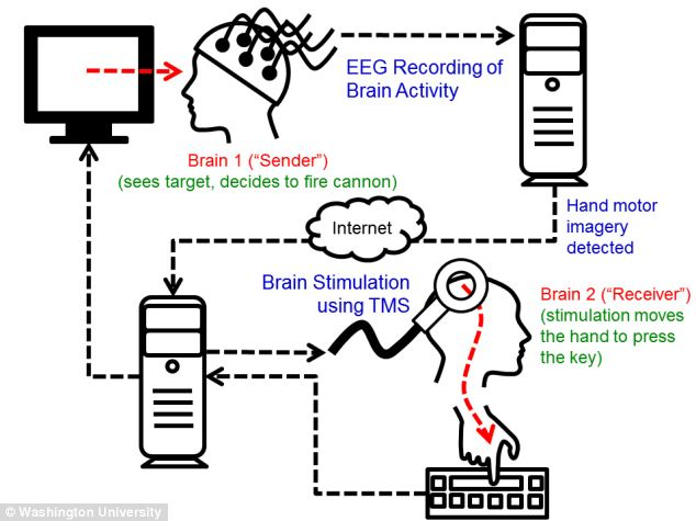 This graphic reveals how the process works. Brain signals from the 'sender' are recorded. When the computer detects imagined hand movements, a fire command is transmitted over the internet to the TMS machine, which causes an upward movement of the right hand of the 'receiver'