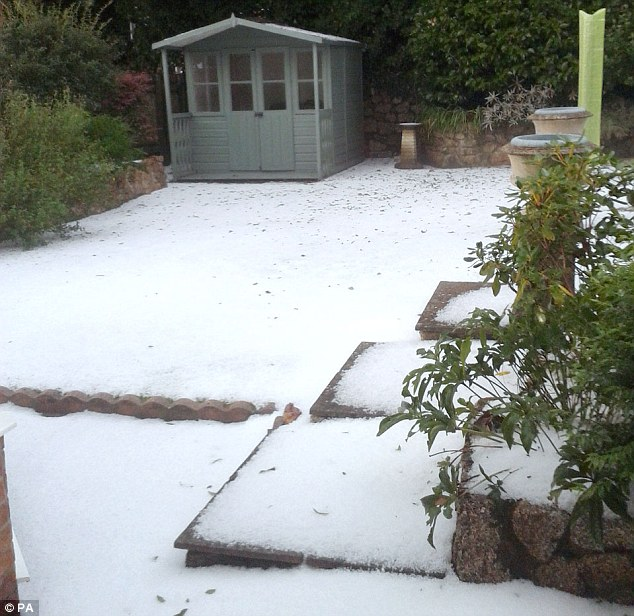 Carpet: The hail storm made a trip to the garden shed somewhat trickier