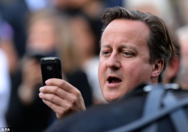 Say cheese: Mr Cameron tries to get the perfect shot of the happy couple