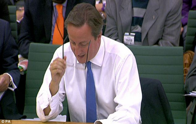 Debut: It is the first time the glasses have been seen, even though Mr Cameron bought them in June