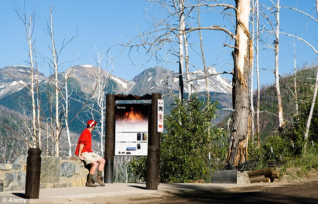 Graham has told an FBI agent that she and her husband had been arguing on July 7 as they walked in the Loop Trail area of Glacier National Park (pictured)