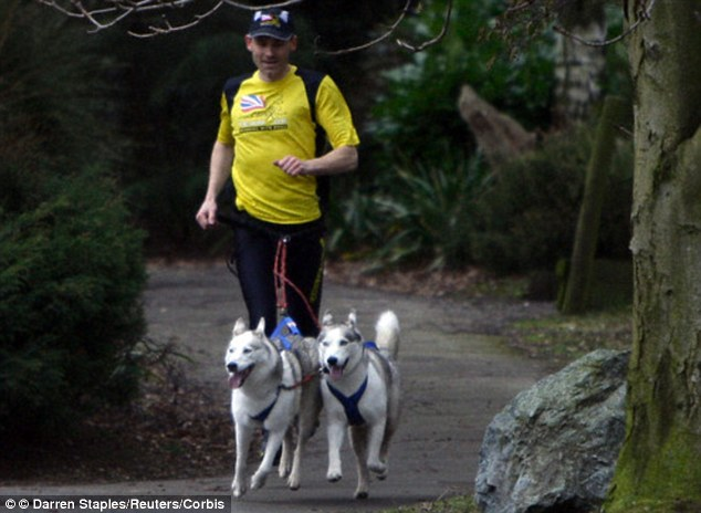 Mush! Dog owner Richard Cook demonstrates CaniX, a form of running with your dog, with his Huskies
