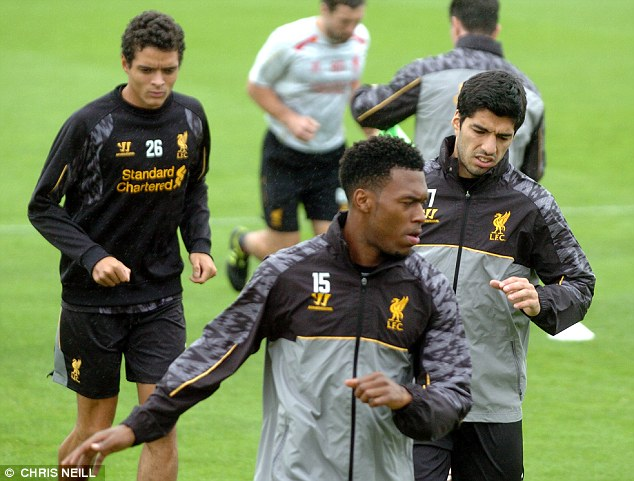 Hard at work: Liverpool hope to be able to partner striker Daniel Sturridge with Luis Suarez once more