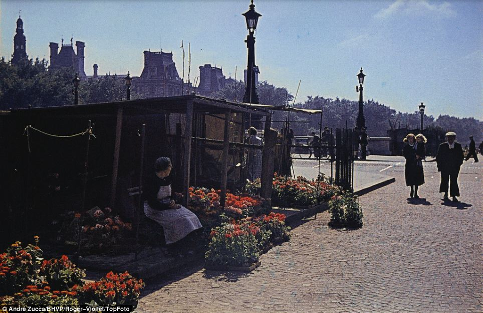 A flower seller sits outside her shop on a bright, sunny day: Zucca's photographs are historically important not only as an example of Nazi propaganda but also because they were shot in colour