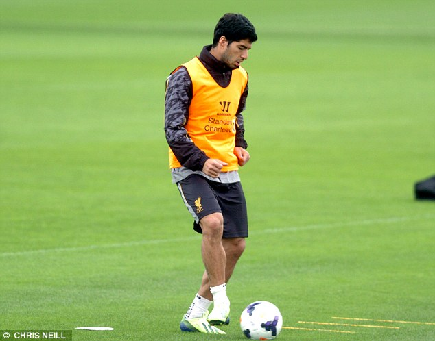Focussed: Suarez is intent on hitting the ground running for the Reds