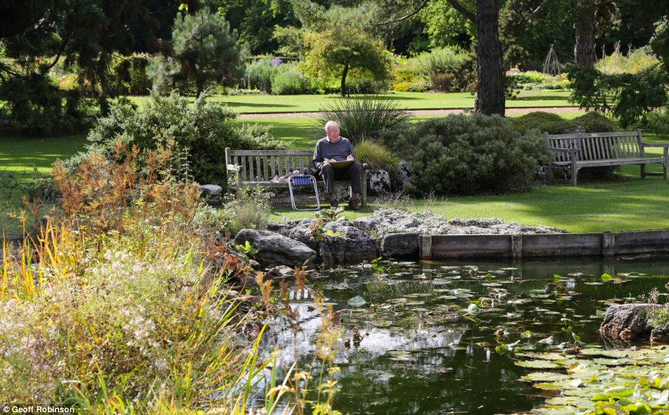 Blissful: A man relaxes in the sun in the gardens, which feature an array of colourful plants, trees and flowers