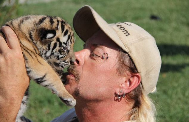 'Dangerous': Critics of the park, such as the Humane Society of the United States, says several people have been bitten by tigers at the park. But Schreibvogel says it is not true