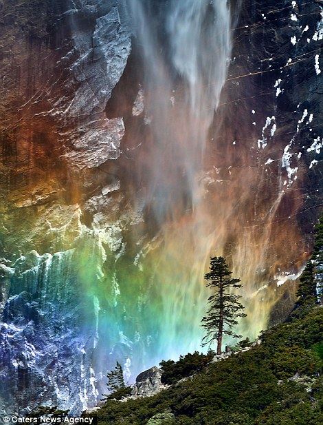 Stunning rare moment: This spectacular shot was captured as the late afternoon autumn light caught the mist from Bridalveil Fall, in Yosemite National Park, California