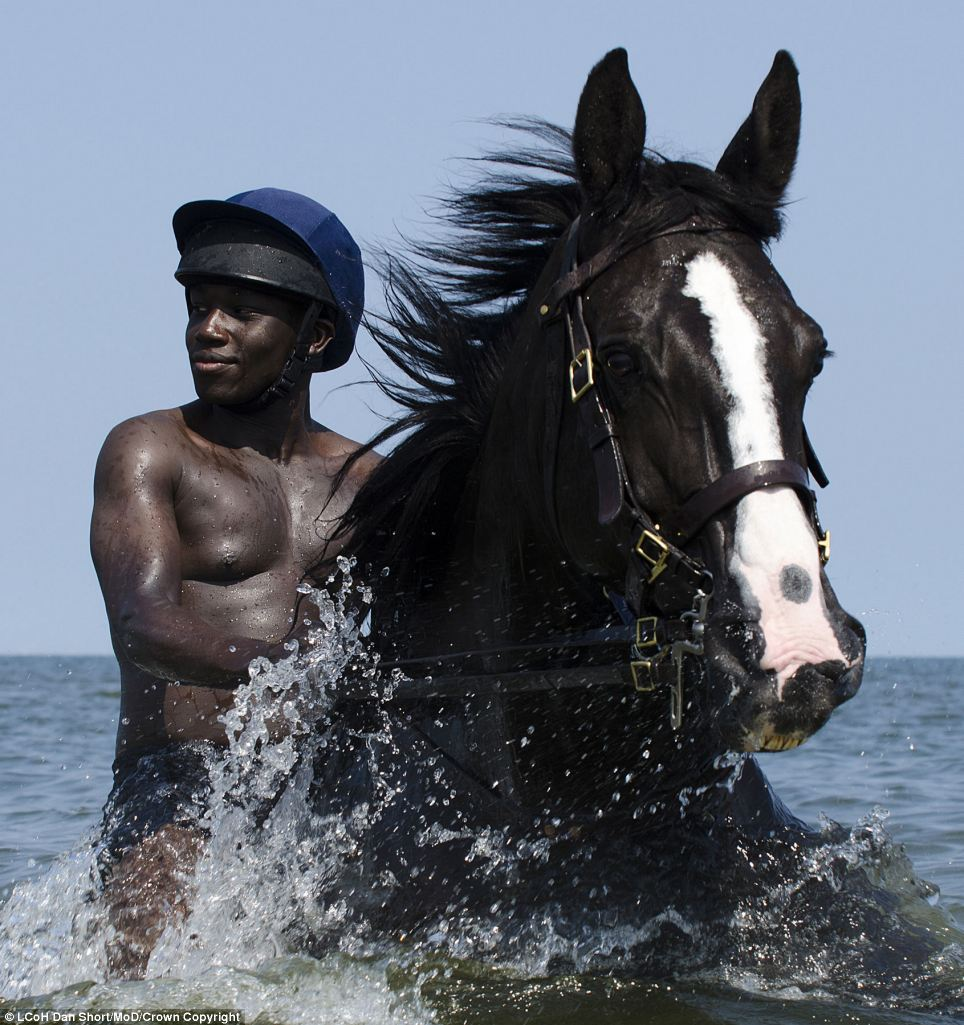 'The Water Horse' by Lance Corporal of Horse Dan Short, Household Cavalry