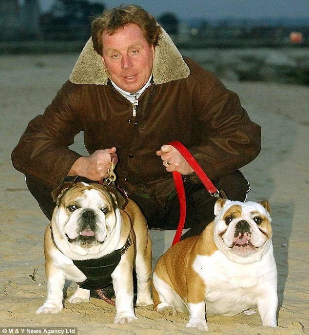 Life's a beach: Harry with Rosie and Buster, who helped collar Amdy Faye for Portsmouth