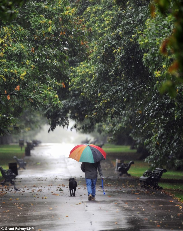 Walking the dog: Wet windy and rainy weather yesterday at Greenwich Park in south-east London