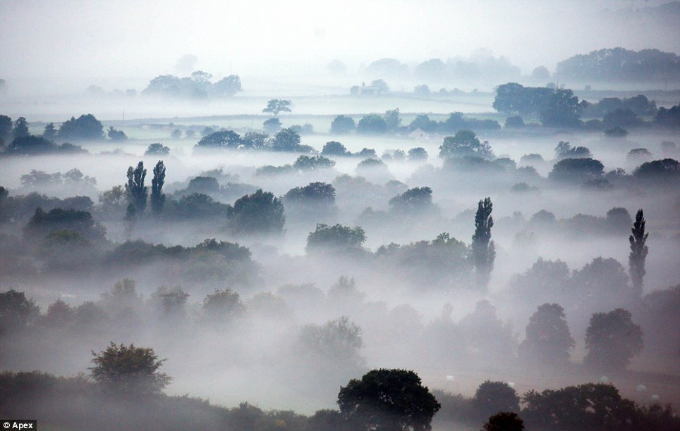 Eerie scene: A beautiful morning mist was photographed rolling in near Batcombe Vale, close to Shepton Mallet in Somerset