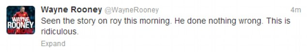 Defence: Wayne Rooney took to Twitter to stand up for Hodgson