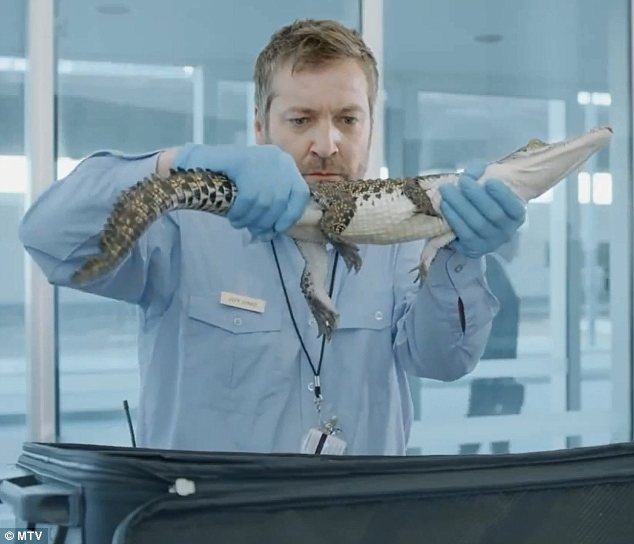 Oh snap: One of the items the airport worker pulls out of Redfoo's bag is a baby alligator