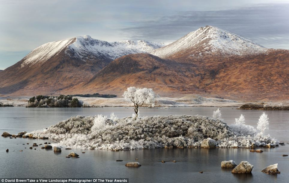 Winter scene: This image, titled 'Ghost of Rannoch Moor', was taken by David Breen at the edge of Loch Rannoch in Scotland