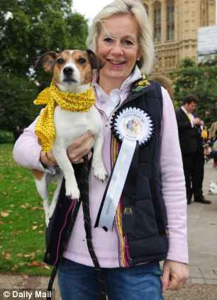 Westminster Dog of the Year in Victoria Tower Gardens outside the House of Lords. MPs bring their dogs to compete for Westminster Dog of the Year held by the Dog Trust. Pictured: Tessa Munt Liberal Democrat MP for Wells and her dog Poppy