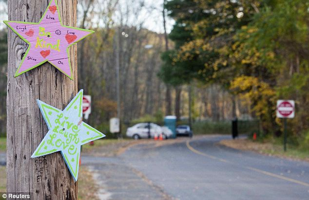 Tributes: Painted stars on a  tree leading to Sandy Hook Elementary School the day before demolition began