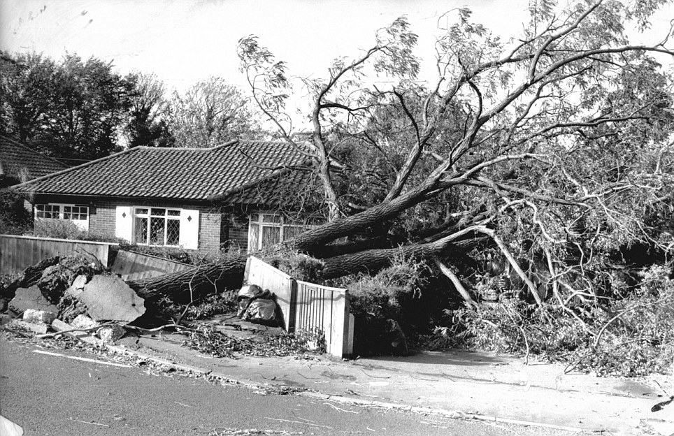 Britain was hit by sine if the worst weather since the Great Storm of 1987 when this tree crashed over in Eynsford, Kent