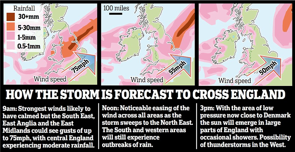 Forecast box