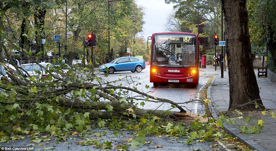 A fallen tree branch blocking the road in St John's Wood, North London after strong winds swept the capital causing damage and travel disruptions
