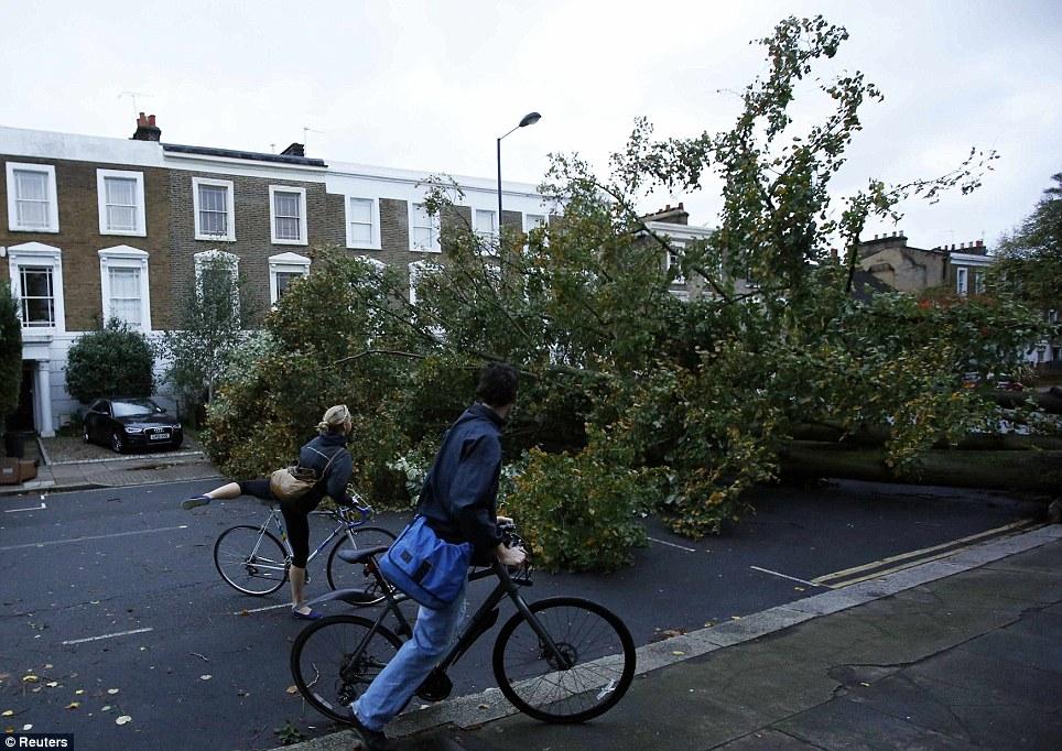 Blockade: Cyclists look at a fallen tree in Islington, north London