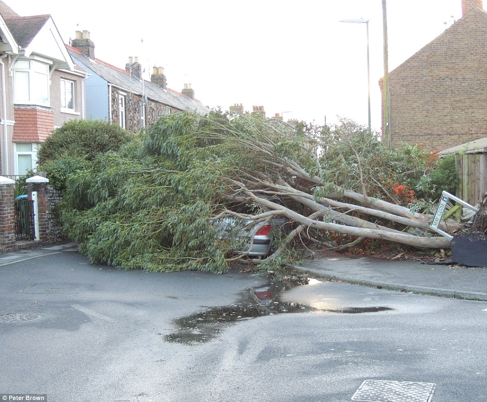 A tree is ripped from its roots, and crashes onto a parked car, cutting off a road in Bognor Regis. Roads in chaos as trees fall onto roads as high winds howl through the south of England and Wales