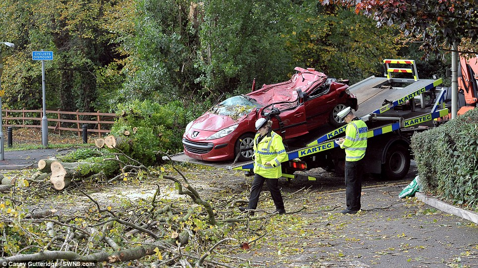 Officers remain at the scene -which is surrounded by felled trees - and the road is closed in both directions