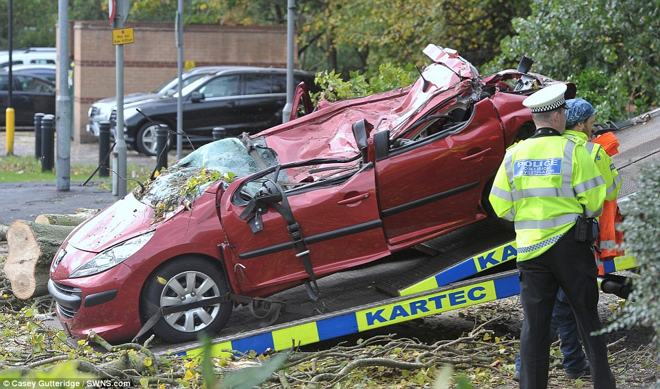 Wreckage: Police at the scene where a tree has fallen onto a car, reportedly killing the driver, on Lower High Street in Watford, Hertfordshire