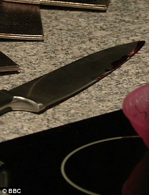 The murder weapon: The bloody knife used to stab Michael