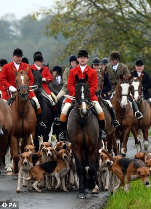 Huntsmen and hounds of the York and Ainsty South Hunt in the lanes around Appleton Roebuck, North Yorkshire