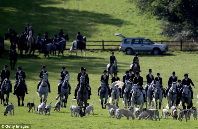 Riders from the Duke of Beaufort's Hunt arrive with the hounds for their opening meet of the season at Worcester Lodge near Badminton in Gloucestershire