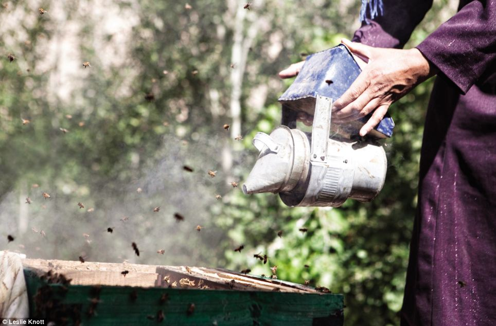 Beekeeping: The charity works with local communities in some of the most remote and poorest rural areas